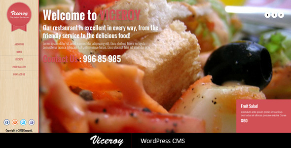 Viceroy – Jquery Single page WordPress CMS