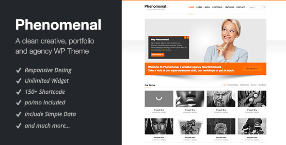 Phenomenal – Responsive WordPress Theme