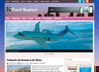 TravelBusiness