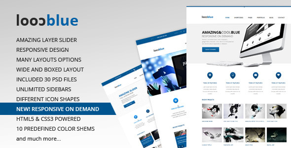 Coolblue – Responsive Multipurpose WordPress theme