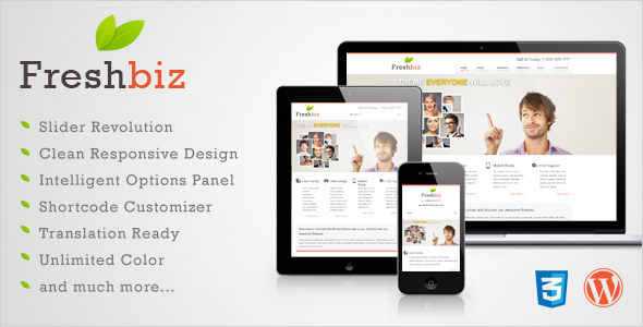 Freshbiz – Responsive Business WP Theme