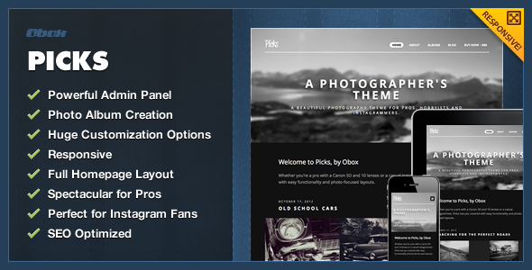 Picks – WordPress Photography Theme
