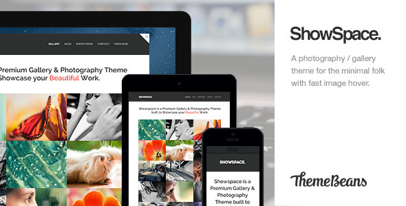 ShowSpace | Responsive Gallery / Photography Theme