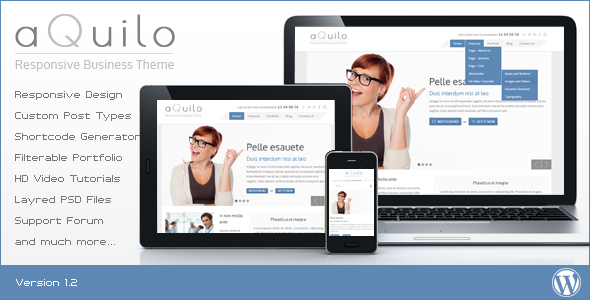 Aquilo – Responsive WordPress Theme