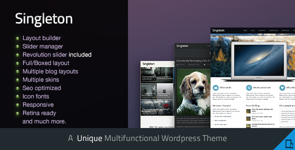 Singleton – A Responsive Multipurpose WP Theme