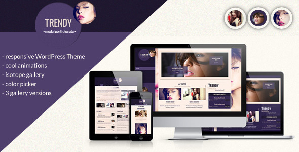 Trendy – Responsive WordPress Theme