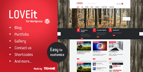 Awesome WordPress Magazine/blog Theme – LOVEit