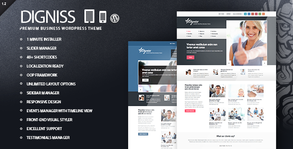Digniss – WordPress Responsive Business Theme