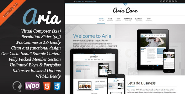 Aria – Pure Business Theme