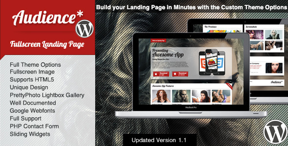 Audience WordPress Fullscreen Landing Page