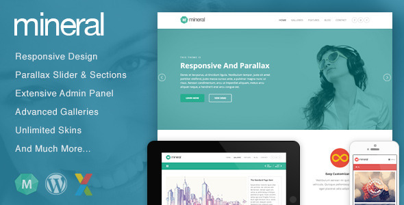 Mineral – Responsive Multi-Purpose WordPress Theme
