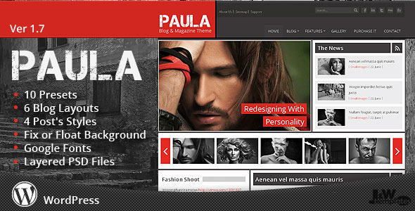 Paula – Blog & Magazine WordPress Theme