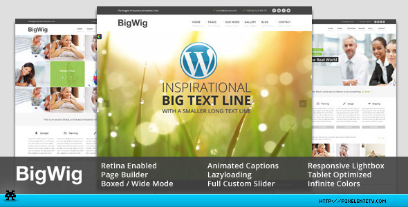 BigWig – Modern Corporate Retina WordPress Theme