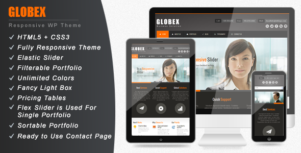 Globex – Responsive Business WordPress Theme