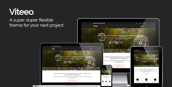 Viteeo – Responsive Business Theme