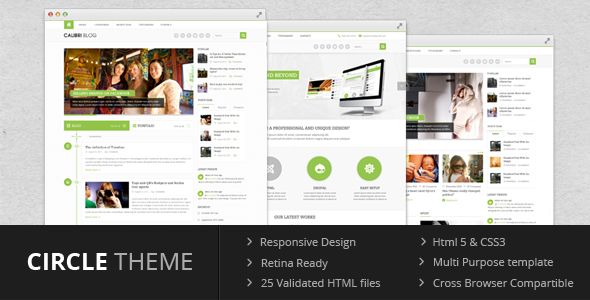 Circle theme – Multi Purpose Template