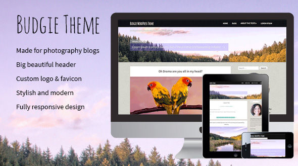 Photography Blog WordPress Theme – Budgie