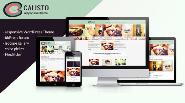 Calisto – Responsive WordPress Theme