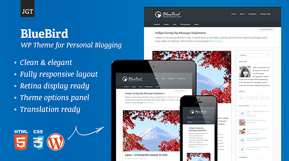 BlueBird – Beautiful WordPress Theme for Personal Blogging