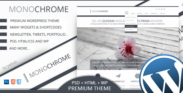 Monochrome – Creative Premium WordPress Theme