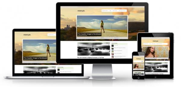 Aldehyde WordPress Theme