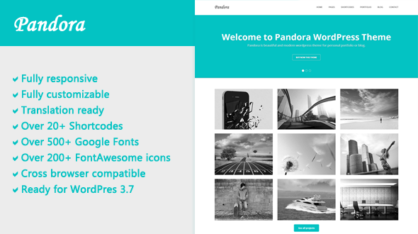 Pandora – Responsive WordPress Theme