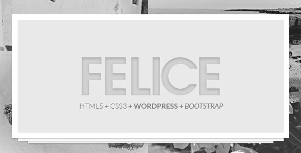 Felice Theme – 2 in 1 (One Page & Multi Page)