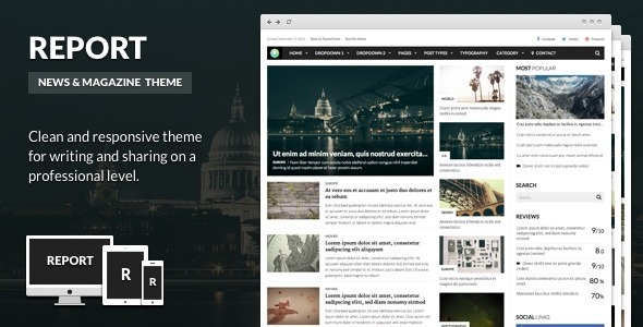 Report – News & Magazine Theme for WordPress