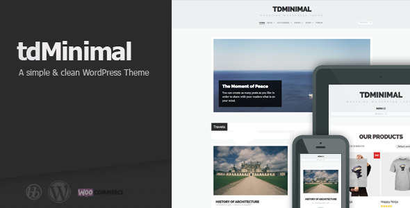 tdMinimal – Responsive WordPress Theme