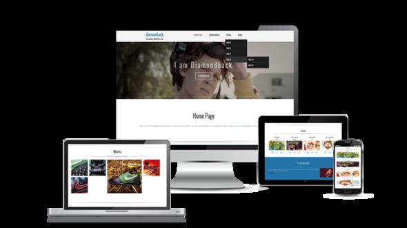 Diamondback Responsive WordPress Theme