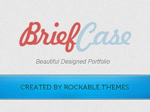 Briefcase Pro Portfolio