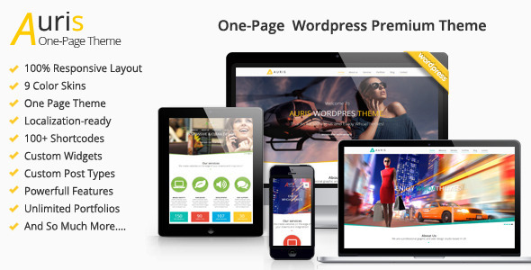 Auris One Page Responsive WordPress Theme