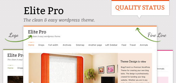 Elite Pro Responsive WordPress Theme