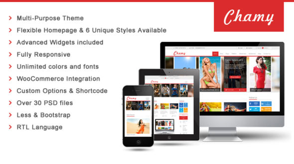SW Chamy – Responsive WooCommerce Theme for WordPress