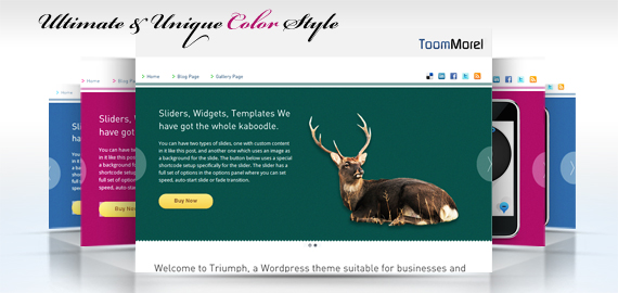 ToomMorel – A Single Click Install WordPress Theme