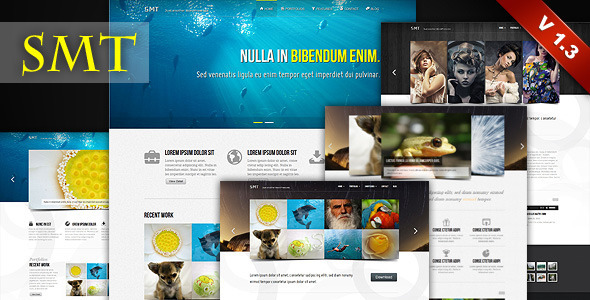 SMT – Premium WordPress Theme