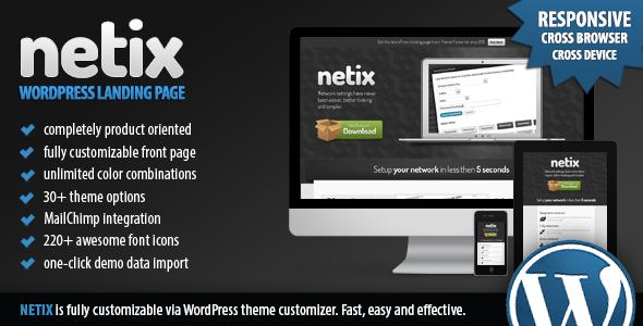 Netix – Responsive WordPress Landing Page