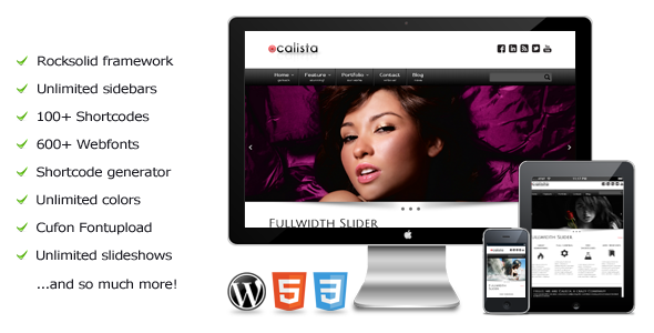 Calista – a premium WordPress theme