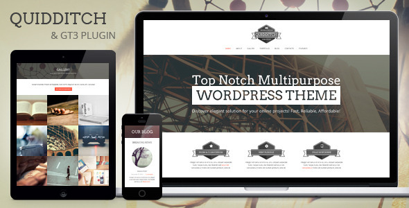 Quidditch – One Page WordPress Theme