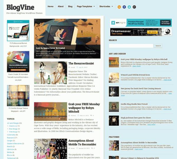 BlogVine