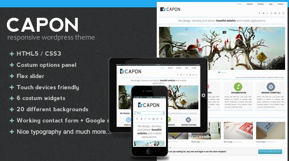 Capon – Responsive WordPress Theme