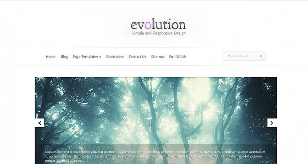 Evolution Responsive WordPress Theme
