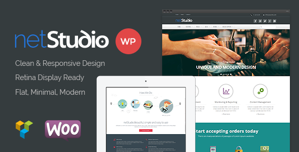 Netstudio – Premium Multipurpose Responsive Theme