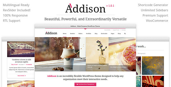 Addison – Premium Multi-Purpose WordPress Theme