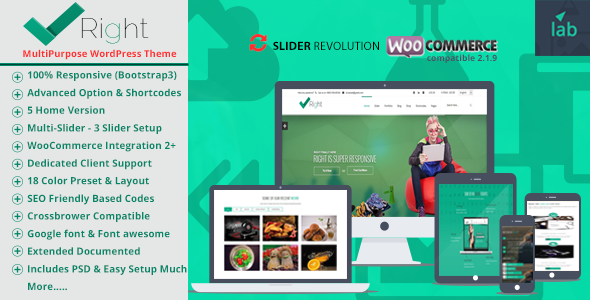 Right Multipurpose/Shop WordPress Template Bundle
