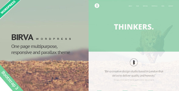 Birva – Creative One Page WordPress Theme