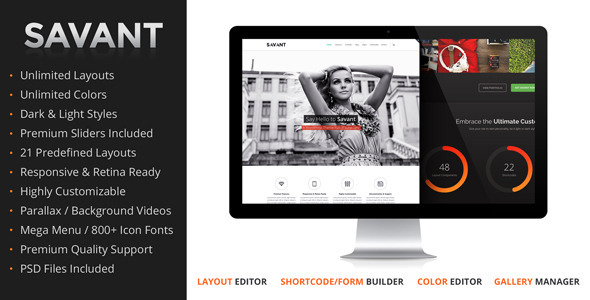 Savant – Responsive Multi-Purpose WordPress Theme