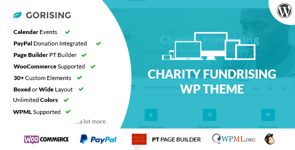 GoRising – Charity Non-Profit Fundrising WP Theme