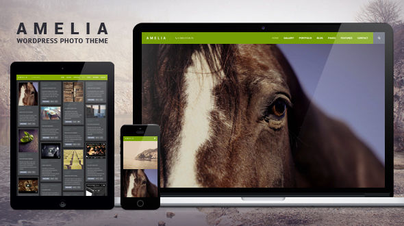 Amelia Photo WordPress Theme