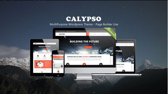 Calypso – MultiPurpose WordPress Theme